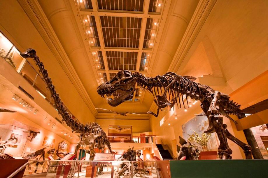 Ala dos dinossauros do Museum of Natural History