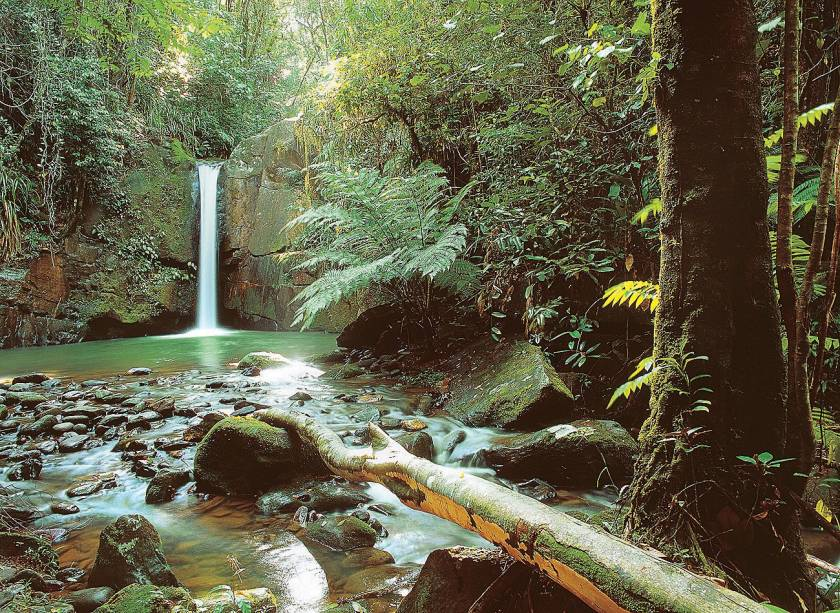 "A cidade abriga três dos quatro núcleos de visitação do Petar (Parque Estadual Turístico do Alto Ribeira). Passeios nas cavernas e cachoeiras são as atividades mais procuradas.<a href=""https://www.booking.com/searchresults.pt-br.html?aid=332455&lang=pt-br&sid=eedbe6de09e709d664615ac6f1b39a5d&sb=1&src=searchresults&src_elem=sb&error_url=https%3A%2F%2Fwww.booking.com%2Fsearchresults.pt-br.html%3Faid%3D332455%3Bsid%3Deedbe6de09e709d664615ac6f1b39a5d%3Bclass_interval%3D1%3Bdest_id%3D-646567%3Bdest_type%3Dcity%3Bdtdisc%3D0%3Bfrom_sf%3D1%3Bgroup_adults%3D2%3Bgroup_children%3D0%3Binac%3D0%3Bindex_postcard%3D0%3Blabel_click%3Dundef%3Bno_rooms%3D1%3Boffset%3D0%3Bpostcard%3D0%3Braw_dest_type%3Dcity%3Broom1%3DA%252CA%3Bsb_price_type%3Dtotal%3Bsearch_selected%3D1%3Bsrc%3Dsearchresults%3Bsrc_elem%3Dsb%3Bss%3DIlhabela%252C%2520%25E2%2580%258BS%25C3%25A3o%2520Paulo%252C%2520%25E2%2580%258BBrasil%3Bss_all%3D0%3Bss_raw%3DIlhabela%3Bssb%3Dempty%3Bsshis%3D0%3Bssne_untouched%3DIlha%2520Grande%26%3B&ss=Iporanga%2C+%E2%80%8BS%C3%A3o+Paulo%2C+%E2%80%8BBrasil&ssne=Ilhabela&ssne_untouched=Ilhabela&city=-646567&checkin_monthday=&checkin_month=&checkin_year=&checkout_monthday=&checkout_month=&checkout_year=&no_rooms=1&group_adults=2&group_children=0&highlighted_hotels=&from_sf=1&ss_raw=Iporanga&ac_position=0&ac_langcode=xb&dest_id=-647191&dest_type=city&search_pageview_id=c7cf72775edc0029&search_selected=true&search_pageview_id=c7cf72775edc0029&ac_suggestion_list_length=3&ac_suggestion_theme_list_length=0"" target=""_blank"" rel=""noopener""><em>Busque hospedagens em Iporanga</em></a>"