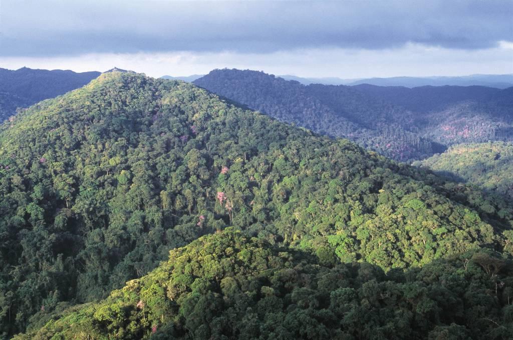 Vista aérea do Parque Estadual Intervales, Ribeirão Grande (SP)