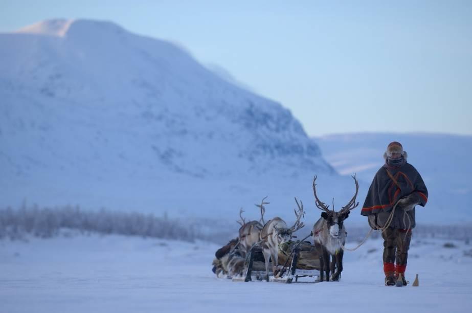 Expedições na Lapônia são um tipo de atividade recomendada para quem quer conhecer um pouco mais da cultura sami, seus rebanhos de renas e o modo de vida junto ao Círculo Polar Ártico