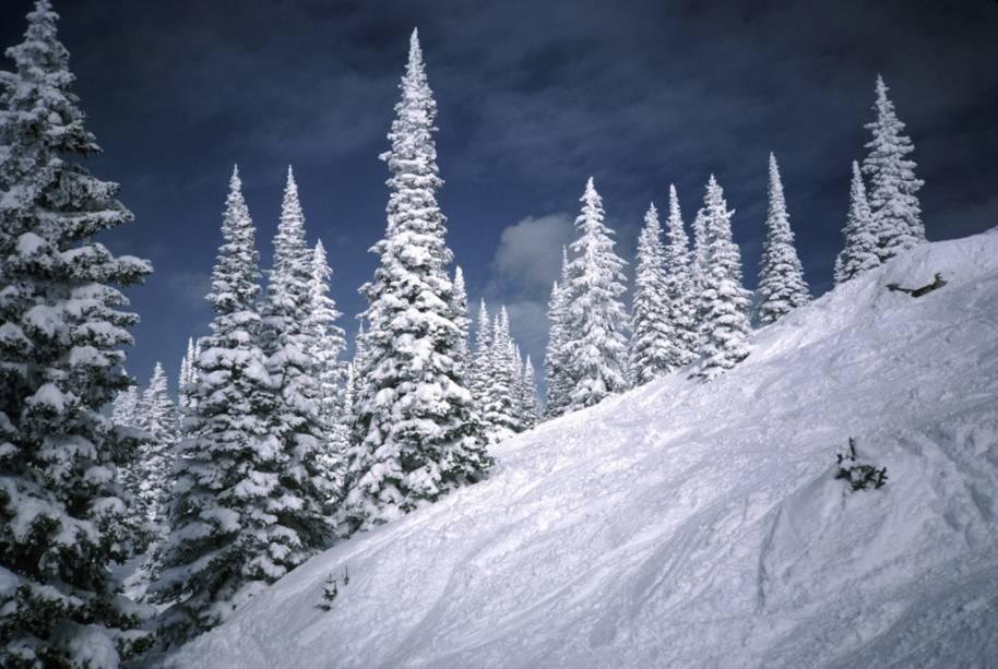 <strong>Steamboat Springs, Colorado, Estados Unidos</strong><br />        Além de ter um dos maiores resorts de esqui do Colorado, Steamboat Springs é única no estado. É autenticamente uma cidade de trabalhadores cowboys que se tornou um dos pontos de esqui mais importantes do país. Howelsen Hill é a maior área do esporte em funcionamento contínuo do Colorado. Anualmente, em fevereiro, há o Winter Carnival, quando caminhões despejam neve na rua principal da cidade para competições de skijoring (puxados por cavalos, cachorros ou veículos) e a passagem de bandas escolares que desfilam em esquis. Steamboat Ski Resort tem neve fofa e leve, além de esqui em árvores