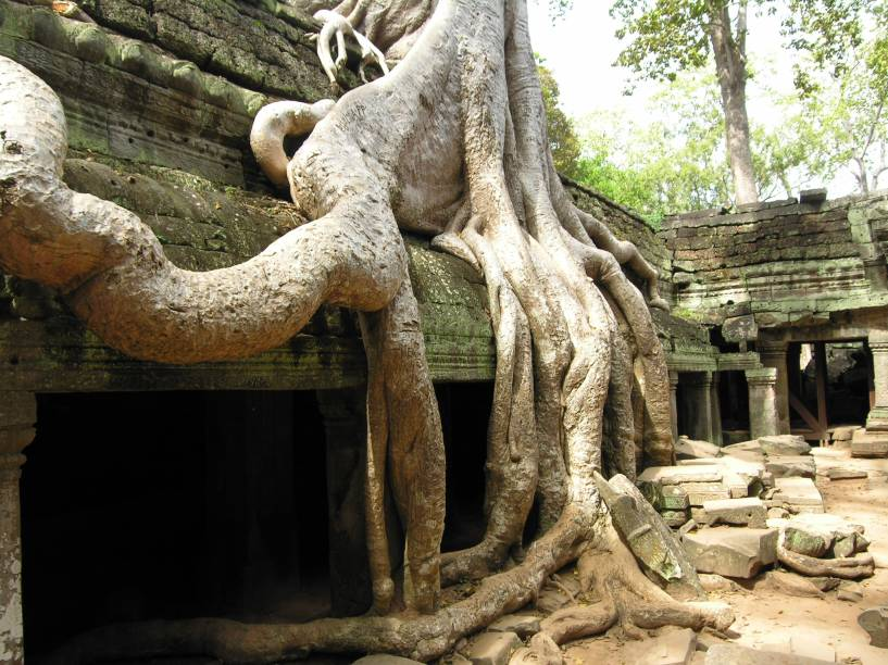 <strong>4. Ta Prohm</strong>Mais do que a sua arquitetura, este templo chama a atenção por ser um dos mais tomados por árvores que crescem dentro e fora das ruínas. Com raízes expostas enormes, essas árvores centenárias estão em constante conflito com as paredes de pedra. O resultado é impressionante!
