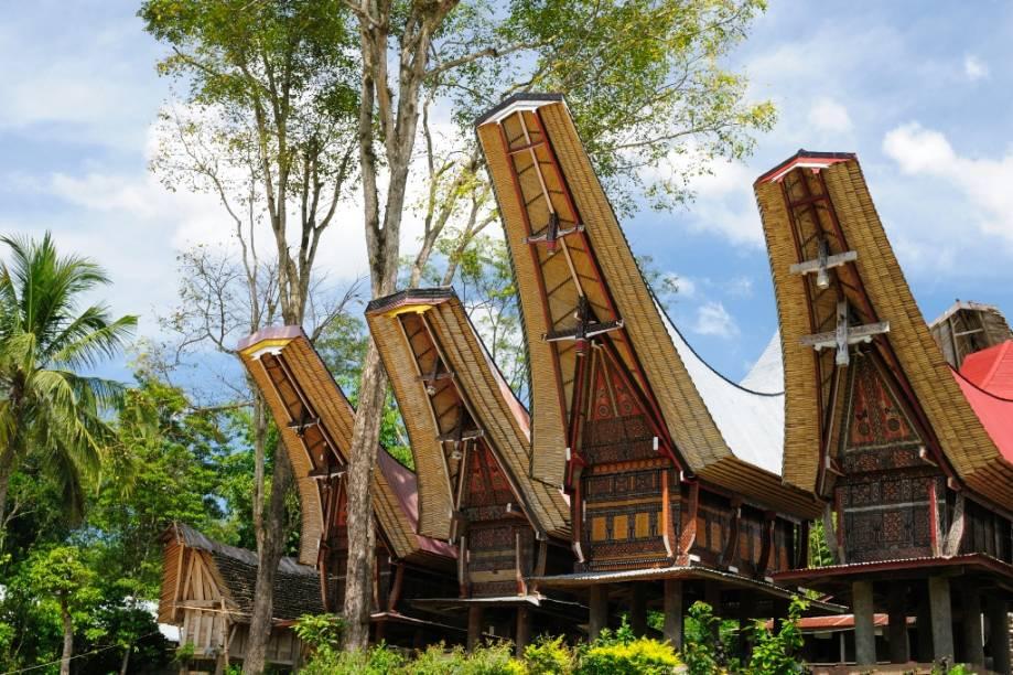 Centro da vida social do povo Toraja, em Sulawesi, os tongkonans são edificações construídas sobre pilares e possuem seus característicos telhados de bambu. Antes reservadas para a aristocracia, com o passar dos anos famílias comuns, mas abastadas, passaram a construí-las para seu uso
