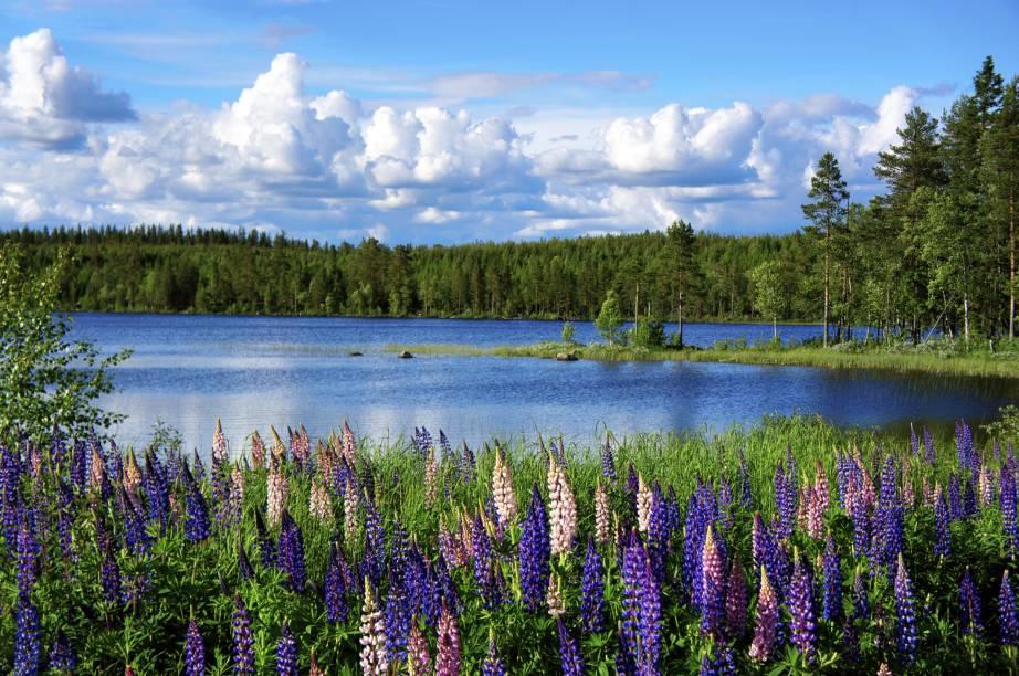 Considerado um dos mais belos países da Escandinávia, a Suécia concentra muitos lagos, que completam seus cenários repletos de natureza, charme e romantismo