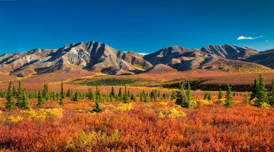 """Cobrindo uma área de aproximadamente 25 mil km², o <strong>Denali National Park</strong> oferece cenários bem relaxantes aos turistas. A bela paisagem acima é vista do outono. Apesar disso, as caminhadas por suas trilhas são mais tranquilas no verão, graças às temperaturas<em><a href=""""http://www.booking.com/searchresults.pt-br.html?aid=306397;label=denali-national-park-fkJUUdMB5DgWx0aZkRUORQS15138313709%3Apl%3Ata%3Ap15%3Ap2%3Aac%3Aap1t2%3Aneg;sid=5b28d827ef00573fdd3b49a282e323ef;dcid=1;city=900039087;hyb_red=1;redirected=1;redirected_from_city=1;source=city;src=city&?aid=332455&label=viagemabril-paisagens-do-alasca"""" rel=""""Veja preços de hotéis próximos ao Denali National Park no Booking.com"""" target=""""_blank"""">Veja preços de hotéis próximos ao Denali National Park no Booking.com</a></em>"""