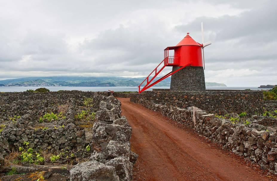 <strong>Ilha do Pico </strong> O nome é referente à Montanha do Pico, a mais alta de Portugal. A Ilha faz parte do arquipélago dos Açores e é uma das mais bonitas. A Paisagem da Cultura da Vinha é o que faz da Ilha um patrimônio, com seu solo de lava negra e os muros de pedras que protegem as uvas da água do mar e do vento