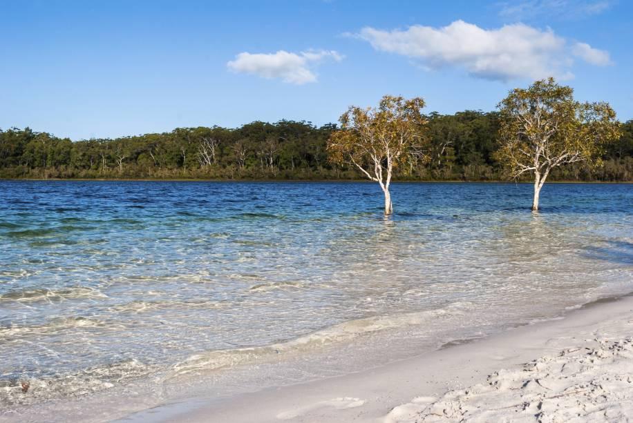 <strong>Fraser Island </strong>        A maior ilha de areia do mundo tem muito mais beleza além da areia. Mais do que as praias, lagos e riachos cristalinos no interior da ilha, rodeados por árvores bem altas, dão o tom ao lugar. É o caso do lago Mackenzie (foto), um entre mais de uma centena de outros lagos cristalinos, que fazem a alegria dos turistas