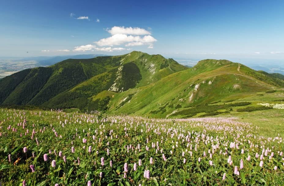 Na parte ocidental dos Cárpatos, entre as vilas de Nitrianske Pravno, Zázrivá e Strečno, e a cidade de Martin, a região montanhosa de Malá Fatra encanta com seus belos cenários