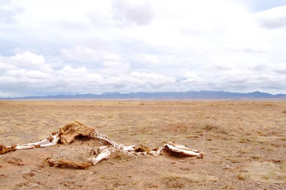 """<strong>10. Deserto de Gobi, na Mongólia</strong>                                Se o deserto de Gobi, na Mongólia, fosse cenário de Mad Max, ele seria o Vale Verde - uma terra """"fértil"""" para os padrões pós-apocalípticos do filme. Só que, para os padrões atuais do nosso planeta, Gobi é, ainda, um lugar árido: o imenso deserto tem uma reduzidíssima densidade populacional, restrita aos nômades que vivem em suas tradicionais tendas circulares, as yurts"""