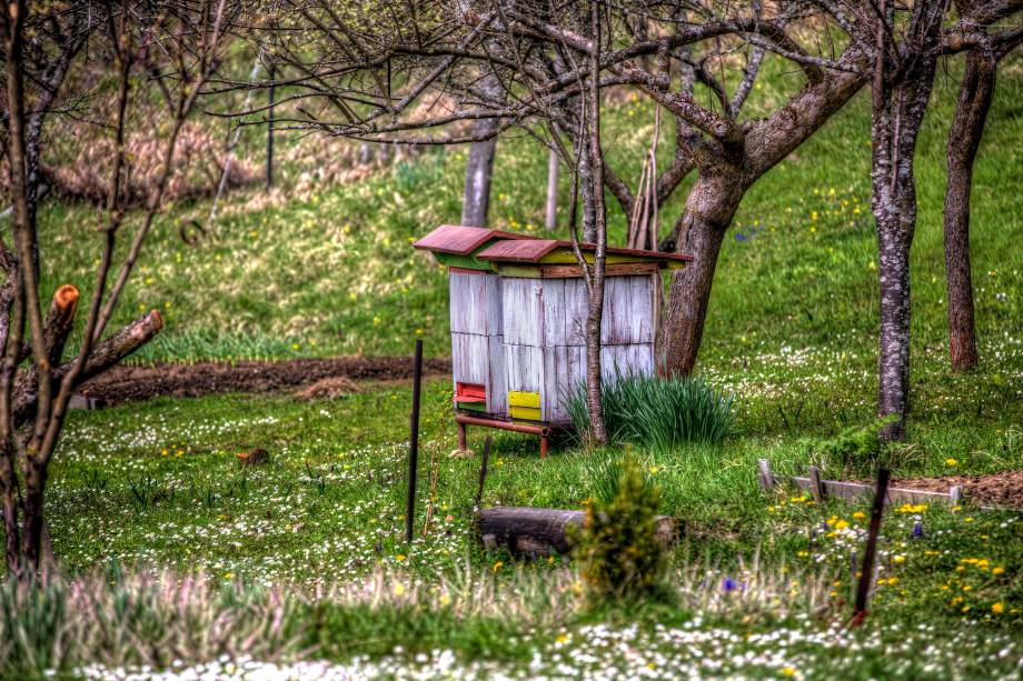 As colmeias de Vlkolínec compõem um cenário campestre - uma das facetas da Eslováquia. A aldeia é repleta de construções pequenas e charmosas