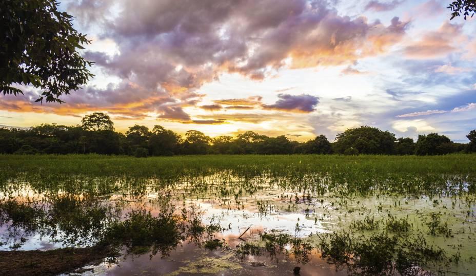 """<a href=""""http://viajeaqui.abril.com.br/cidades/br-mt-pantanal"""" rel=""""Pantanal (MT) """" target=""""_blank""""><strong>Pantanal (MT) </strong></a>A região é uma das maiores planícies inundáveis do mundo. As opções de passeios terrestres são tão variadas quanto os aquáticos, que se transformam completamente de acordo com a época do ano, seca ou cheia. Você pode fazer os passeios em propriedades particulares ou conhecer em um barco o Parque Nacional do Pantanal Mato-Grossense<a href=""""http://www.booking.com/city/br/pocone.pt-br.html?aid=332455&label=viagemabril-voltapelobrasil"""" rel=""""Veja hotéis em Poconé no booking.com"""" target=""""_blank""""><em>Veja hotéis em Poconé no booking.com</em></a>"""
