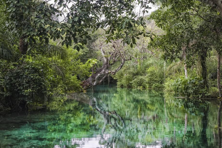 """<a href=""""http://viajeaqui.abril.com.br/cidades/br-ms-bonito"""" target=""""_blank"""" rel=""""noopener""""><strong>Bonito (MS) </strong></a> As águas cristalinas fazem de Bonito o melhor destino para mergulho fluvial no Brasil. Existem opções de passeios mais tranquilos, como as flutuações, e outros mais radicais, como boia-cross e rapel. O que impressiona é a preservação da natureza: alguns lugares parecem recém-descobertos <a href=""""http://www.booking.com/city/br/bonito.pt-br.html?aid=332455&label=viagemabril-voltapelobrasil"""" target=""""_blank"""" rel=""""noopener""""><em>Veja hotéis em Bonito no booking.com</em></a>"""