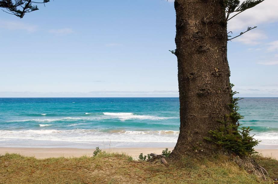 <em><strong>Gisborne</strong></em>- Localizada a 525 quilômetros de Wellington, a cidade é conhecida como uma das primeiras do planeta a receber a luz do sol e portanto a comemorar o Reveillon. As praias de areia branca banhadas pelo oceano Pacífico atraem turistas de diferentes partes do país, mas é em meados de dezembro que Gisborne começa a receber um número maior de turistas interessados em iniciar o ano no local