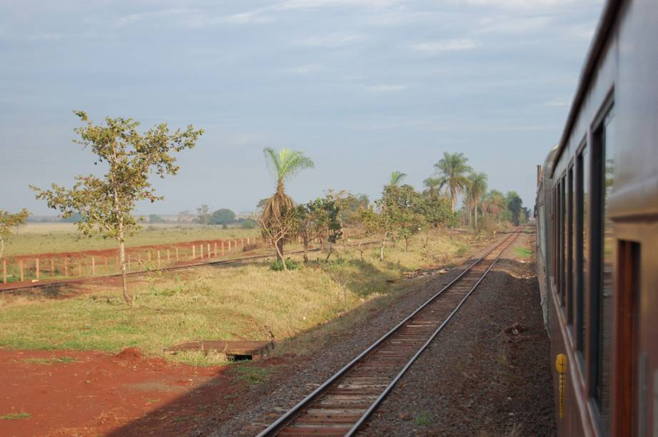"""<a href=""""http://viajeaqui.abril.com.br/estabelecimentos/br-ms-campo-grande-atracao-trem-do-pantanal"""" rel=""""Trem do Pantanal - Campo Grande (MS) até Miranda (MS)"""" target=""""_self""""><strong>Trem do Pantanal - Campo Grande (MS) até Miranda (MS)</strong></a><br />    <br />    O percurso começa em Campo Grande e parte às 8 horas, em sábados alternados (janeiro e julho, todos os sábados), e segue até Miranda, destino final, onde chega às 18 horas. O retorno é feito apenas no dia seguinte. A passagem de ida e volta custa R$ 300. Também é possível fechar um pacote com hospedagem"""