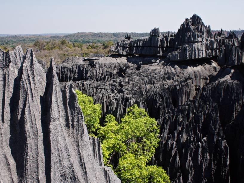 """<strong>Tsingy de Bemaraha, Madagascar</strong>Essas formações rochosas peculiares do Madagascar integram a lista de patrimônios naturais da Unesco..<a href=""""https://www.booking.com/searchresults.pt-br.html?aid=332455&lang=pt-br&sid=eedbe6de09e709d664615ac6f1b39a5d&sb=1&src=index&src_elem=sb&error_url=https%3A%2F%2Fwww.booking.com%2Findex.pt-br.html%3Faid%3D332455%3Bsid%3Deedbe6de09e709d664615ac6f1b39a5d%3Bsb_price_type%3Dtotal%26%3B&ss=Madagascar&ssne=Ilhabela&ssne_untouched=Ilhabela&checkin_monthday=&checkin_month=&checkin_year=&checkout_monthday=&checkout_month=&checkout_year=&no_rooms=1&group_adults=2&group_children=0&from_sf=1&ss_raw=Madagascar+&ac_position=0&ac_langcode=xb&dest_id=126&dest_type=country&search_pageview_id=7f327118397701ab&search_selected=true&search_pageview_id=7f327118397701ab&ac_suggestion_list_length=5&ac_suggestion_theme_list_length=0"""" target=""""_blank"""" rel=""""noopener""""><em>Busque hospedagens emMadagascar no Booking.com</em></a>"""
