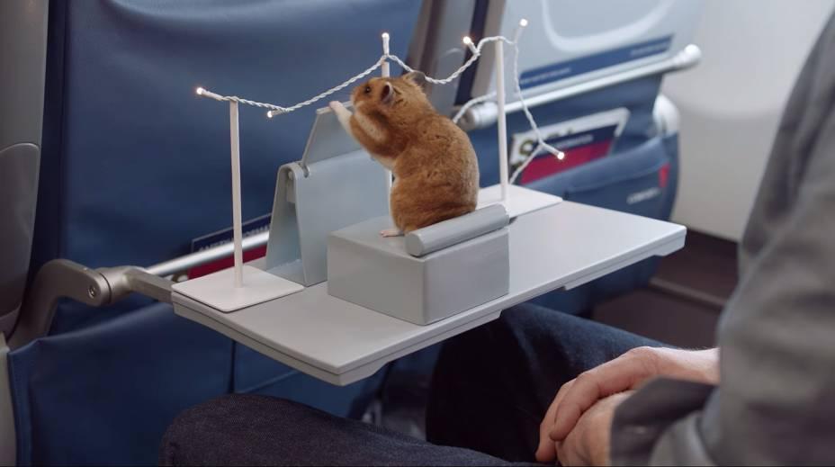"""<strong>Hamsters comendo burritos</strong>                            Um vídeo megaproduzido no Youtube fez o maior sucesso em 2013 por mostrar hamsters comendo miniburritos perfeitos e apetitosos em uma pequena sala de jantar; <a href=""""https://www.youtube.com/watch?list=UUhTRw0OKvFG5k_RLBRmZ_sA&v=JOCtdw9FG-s"""" rel=""""assista"""" target=""""_blank"""">assista</a>"""