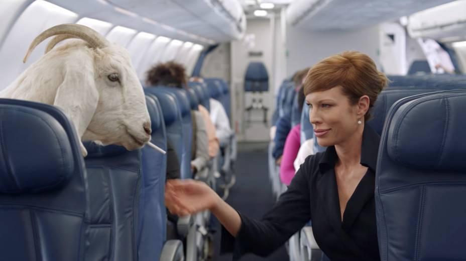 """<strong>Deltalina</strong>                É quase uma piada interna: a comissária que tira o cigarro da boca da cabra é a Deltalina, famosa por ter gravado outros vídeos de segurança para a companhia aérea, na época em que eles não precisavam ser engraçados, como <a href=""""https://www.youtube.com/watch?v=MgpzUo_kbFY"""" rel=""""este"""" target=""""_blank"""">este</a>"""