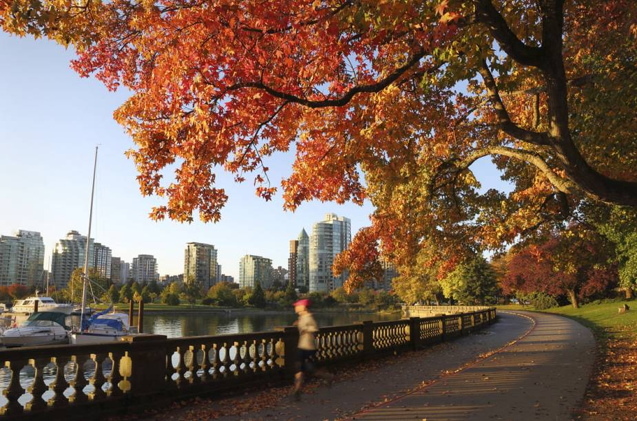"""<strong><a href=""""http://viajeaqui.abril.com.br/cidades/canada-vancouver"""" target=""""_blank"""">Vancouver</a> - <a href=""""http://viajeaqui.abril.com.br/paises/canada"""" target=""""_blank"""">Canadá</a></strong>"""