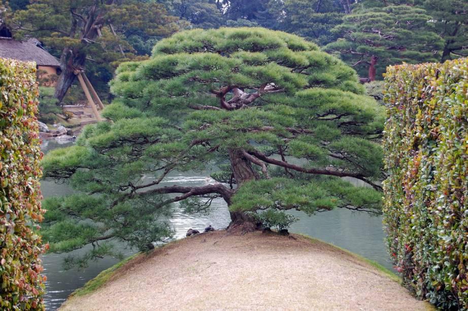 Jardim da vila imperial Katsura Rikyu