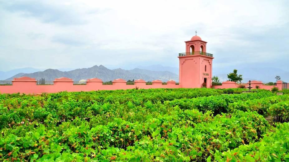 """Com pouco mais de 240 mil habitantes, Ica é considerada como um grande centro de consumo de vinhos no país - uma prova viva de que vinhos da América Latina não se restringem apenas a <a href=""""http://viajeaqui.abril.com.br/paises/chile"""" target=""""_blank"""">Chile</a> e <a href=""""http://viajeaqui.abril.com.br/paises/argentina"""" target=""""_blank"""">Argentina</a>, mas também ao <a href=""""http://viajeaqui.abril.com.br/paises/brasil"""" target=""""_blank"""">Brasil</a>, <a href=""""http://viajeaqui.abril.com.br/paises/uruguai"""" target=""""_blank"""">Uruguai</a> e <a href=""""http://viajeaqui.abril.com.br/paises/peru"""" target=""""_blank"""">Peru</a>. Localizada a 400 metros acima do nível do mar, a Viña Tacama possui vinhedos que totalizam uma área de 200 hectares de extensão e oferece um passeio guiado de trinta minutos. Os cenários de montanhas ao seu redor contribuem para o impacto visual do local"""