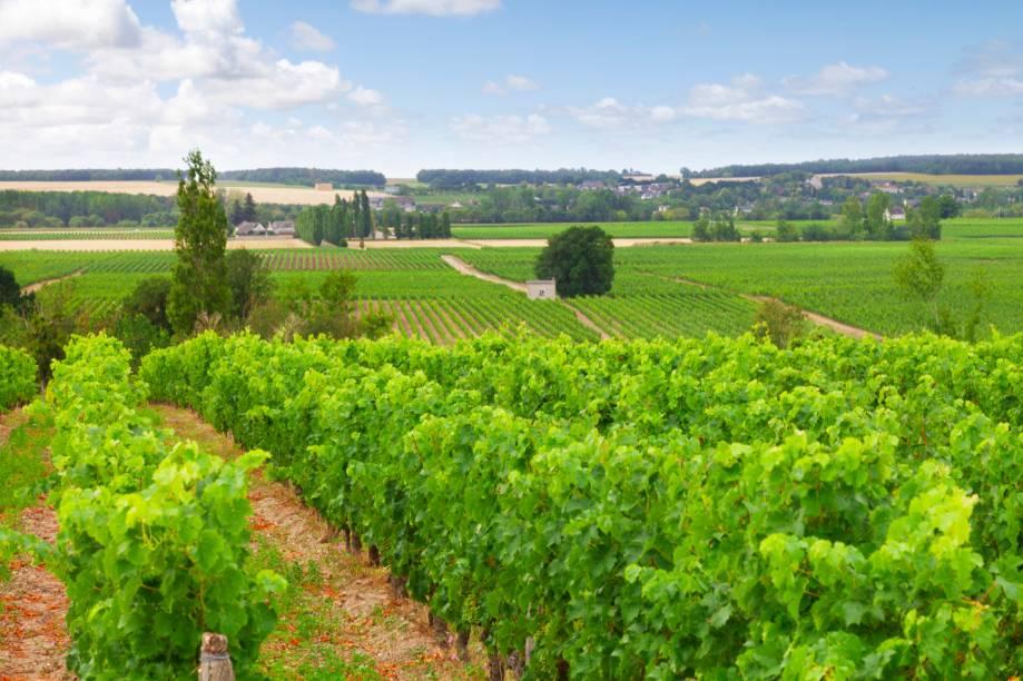 """<strong><a href=""""http://viajeaqui.abril.com.br/cidades/franca-vale-do-loire"""" target=""""_self"""">Vale do Loire</a>, <a href=""""http://viajeaqui.abril.com.br/paises/franca"""" target=""""_self"""">França</a></strong>Castelos, vilarejos e belos jardins são a marca registrada dessa belíssima região, banhada pelo rio homônimo e tombada como Patrimônio Mundial da Unesco. Sauvignon Blanc e Pinot Noir estão entre as uvas mais cultivadas do lugar, considerado o quarto destino mais visitado do país. Importante pólo gastronômico da França, o Vale do Loire também se destaca com sua produção de queijos finos e saborosos<em><a href=""""http://www.booking.com/region/fr/chateauxdelaloire.pt-br.html?aid=332455&label=viagemabril-vinicolas-da-europa"""" target=""""_blank"""" rel=""""noopener"""">Veja preços de hotéis no Vale do Loire no Booking.com</a></em>"""