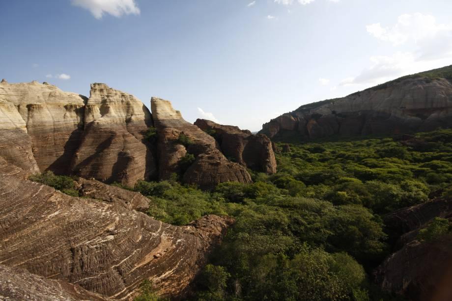 A Serra da Capivara encanta os visitantes com suas camadas de pedra sinuosa, cânions, cactos robustos típicos da caatinga, animais selvagens e pinturas rupestres muito bem conservadas.