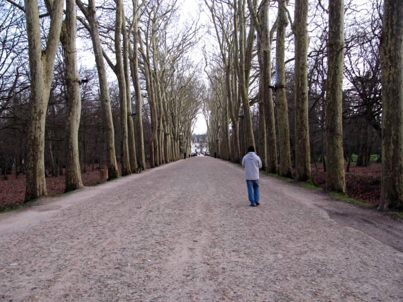 """Caminho para o <a href=""""http://viajeaqui.abril.com.br/estabelecimentos/franca-vale-do-loire-atracao-chateau-de-chenonceau"""" rel=""""Château de Chenonceau"""" target=""""_self"""">Château de Chenonceau</a>, <a href=""""http://viajeaqui.abril.com.br/cidades/franca-vale-do-loire"""" rel=""""Vale do Loire"""" target=""""_self"""">Vale do Loire</a>, <a href=""""http://viajeaqui.abril.com.br/paises/franca"""" rel=""""França"""" target=""""_self"""">França</a>"""