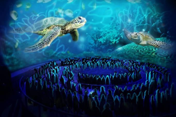 turtletrek-3.jpg