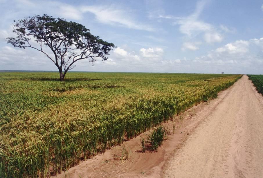 A cidade de Balsas tem boa estrutura de serviços para quem trafega no trecho maranhense da Transamazônica (a BR-230)