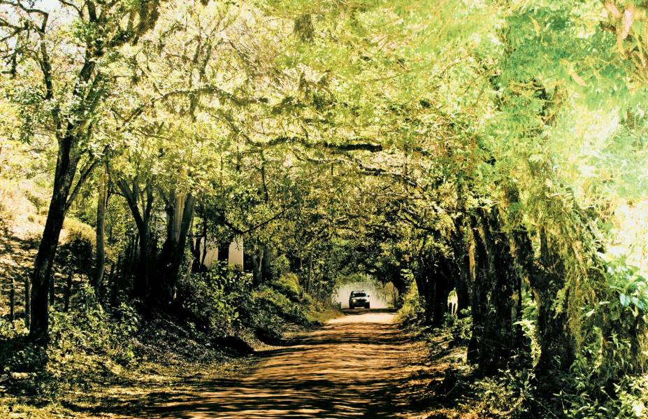 Penedo (RJ) tem natureza exuberante e é ideal para famílias que queiram ter mais contato com o verde