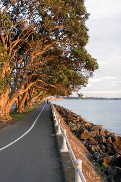 De carro ou de bicicleta vale percorrer a Tamaki Drive, uma avenida costeira que atravessa a baía de Hudson, em Auckland