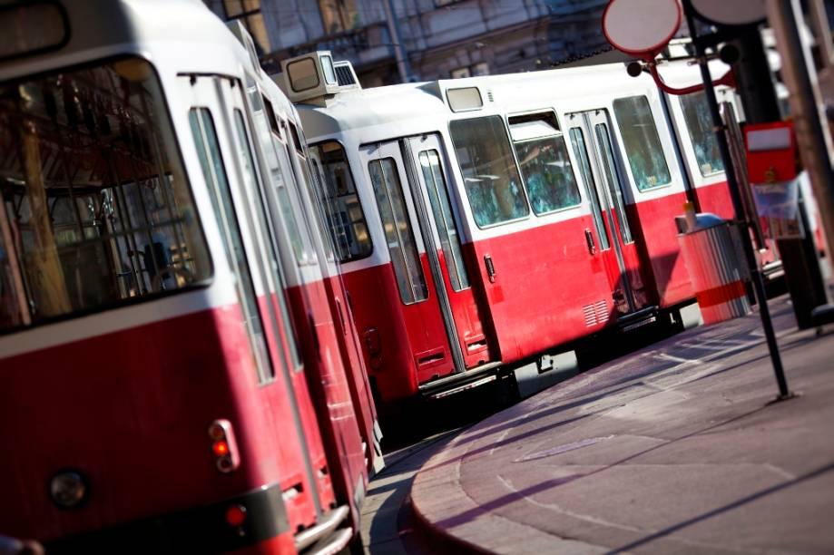 Viena possui um excelente sistema de transportes públicos com bondes e trens circulando pelas principais atrações turísticas e fornecendo práticos acessos para cadeirantes, mães com carrinhos de bebê e mesmo cães-guia