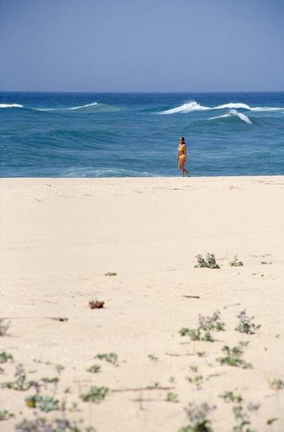 A Ilha Deserta tem águas transparentes, natureza intacta e dunas. Para chegar lá, embarque nos navios que partem