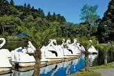 Pedalinhos refletidos no espelho do Lago Negro, Gramado
