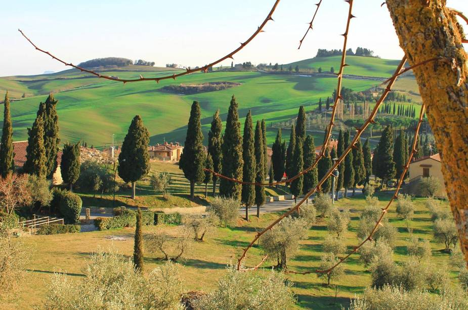 Região rural da Toscana, perto da cidade de Arezzo, no centro da Itália. A Toscana é famosa mundialmente pelos campos verdejantes, repletos de plantações de vinho e de oliveiras