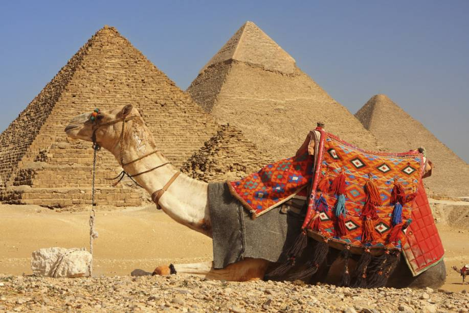 Passeios com dromedário nas pirâmides de Gizé fazem a alegria de muitos turistas