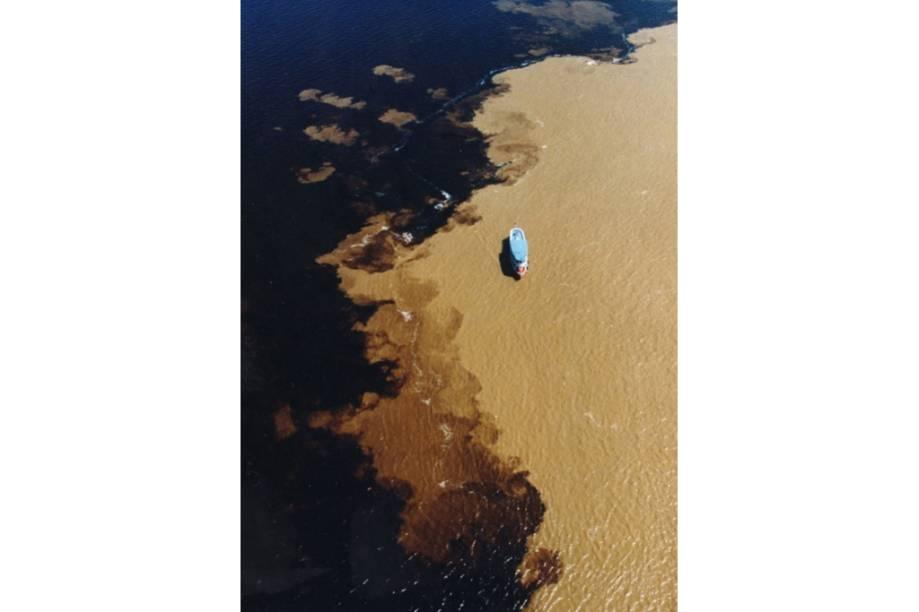 Com diferentes densidades e velocidades, as águas dos rios Negro e Solimões correm cerca de 6 km lado a lado antes de misturarem para formar o gigantesco Rio Amazonas. Botos são comuns pelo caminho