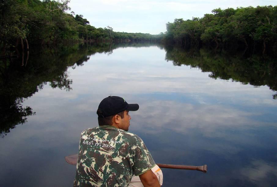 """O passeio de canoa do <a href=""""http://viajeaqui.abril.com.br/estabelecimentos/br-am-manaus-hospedagem-amazon-tupana-lodge"""" rel=""""Amazon Tupana Lodge """" target=""""_blank"""">Amazon Tupana Lodge </a>por tributários dos rios principais oferece uma oportunidade maior para a observação da vida selvagem. Rios menores têm menos movimento e a fauna acaba aparecendo com uma frequência maior."""
