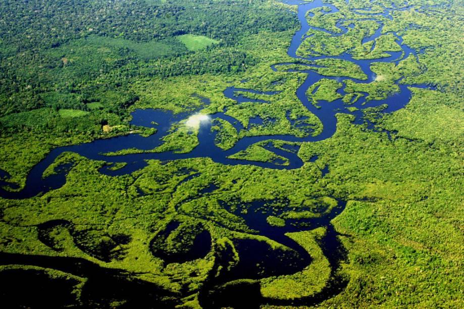 Vista aérea da Floresta Amazônica, Amazonas