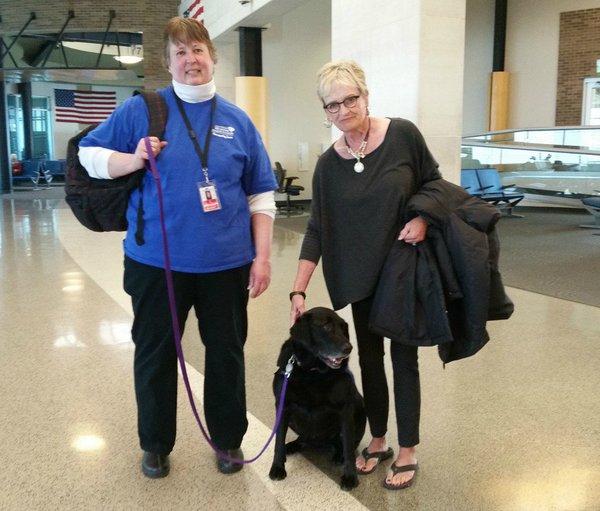 No Wisconsin, o aeroporto de Appleton se uniu a uma ONG de animais abandonados para alegrar os passageiros (crédito: Reprodução Twitter @atwairport)