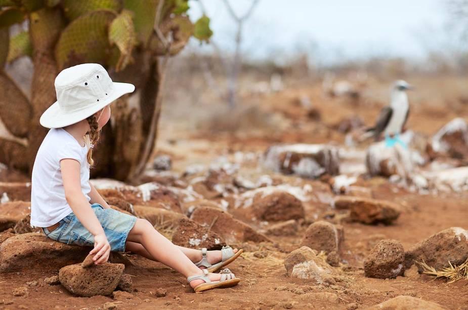 Pela variedade das espécies de animais e plantas, Galápagos é diversão certa para crianças