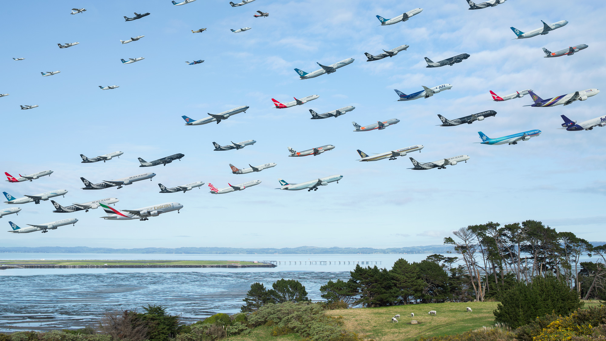 auckland-mikekelley