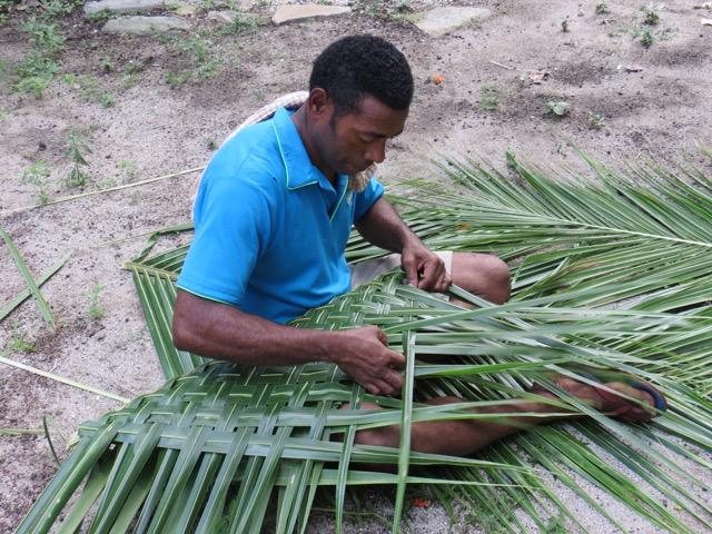 Preparando as folhas de coqueiros para enrolarem a comida na preparação do lovo, o churrasco fijiano