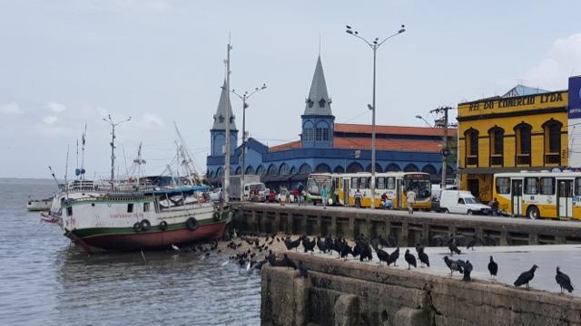 Urubus na linha de frente (no lugar onde os barcos descarregam o peixe na madrugada) e, lá no fundo, o Ver-o-Peso