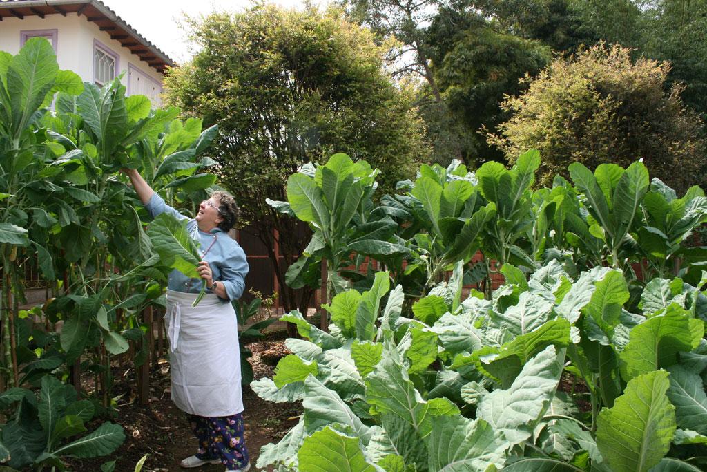 Horta da Beth, com mais de 60 itens usados nas receitas do restaurante Viradas do Largo, em Tiradentes/ MG