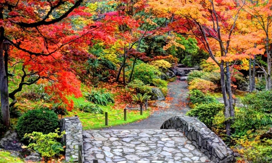 A beleza do Japanese Garden de Seattle, nos EUA