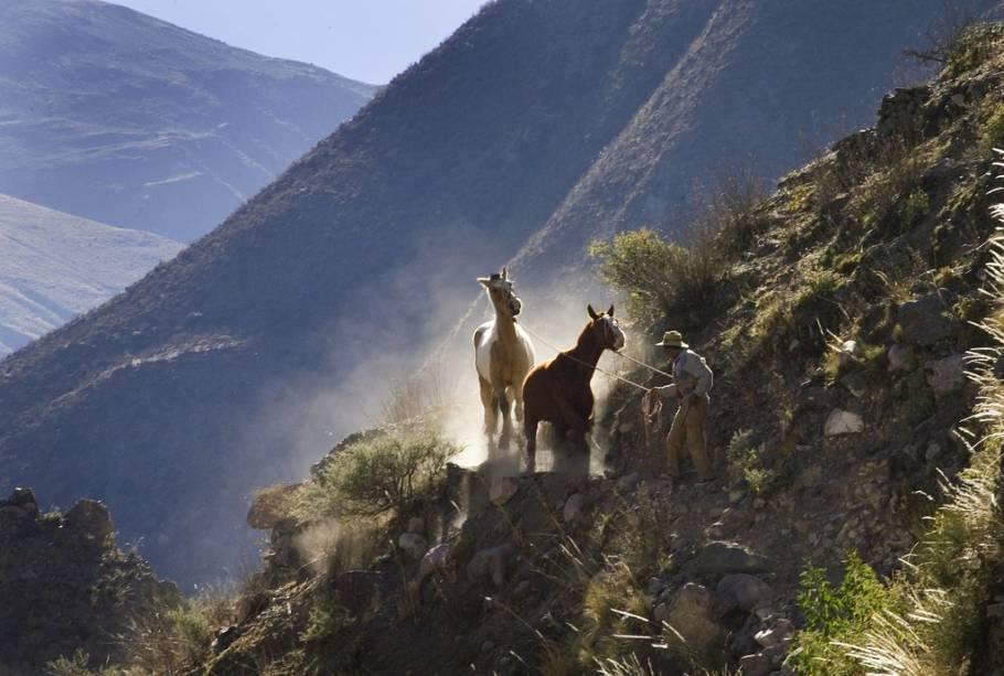 Caminho Andino, próximo a Salta