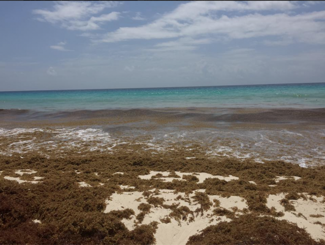 Cancún segunda-feira de manhã