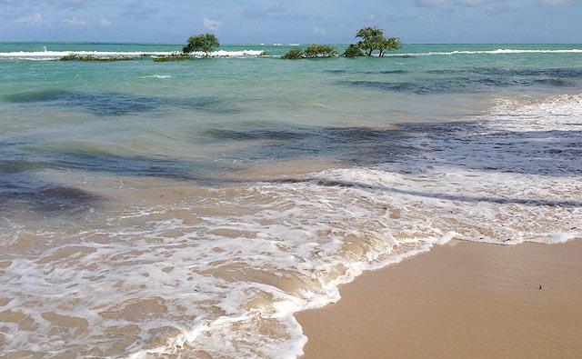 Praia de Carneiros, perto de Recife (PE)
