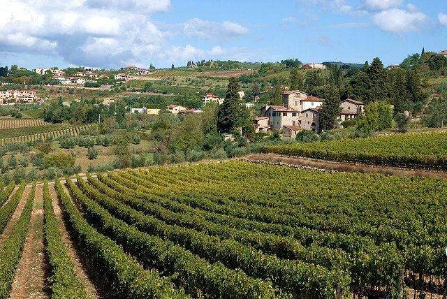 A cidade de Greve in Chianti é conhecida mais do que tudo pelos excelentes vinhos <em>Chianti Classico </em>